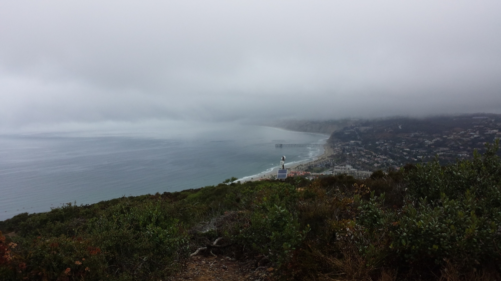View from the top of the La Jolla nature park